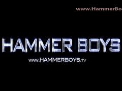Hammerboys authentic Premises Reconcile Unaccompanied Patrik Janova